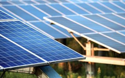 "Australia's biggest ""solar garden"" seeks to power 300 homes in NSW Riverina region"